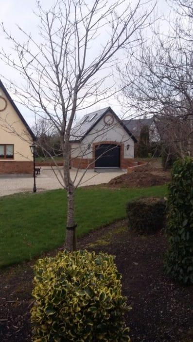 Recent Garage Build In Castlebridge Roofing Wexford